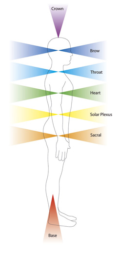 seven major chakras