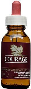Courage - AAV010